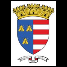 mairie-de-reignac-sur-Indre-37-logo